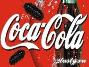 Фото: Из чего сделана Кока-Кола