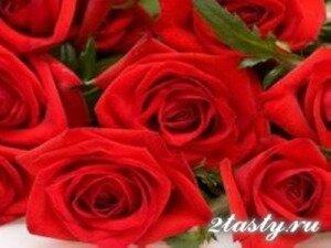 Рецепт Цветки, бутоны и лепестки роз для украшения блюд (фото)
